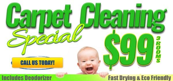 Pro Team Sacramento CA Carpet Cleaner